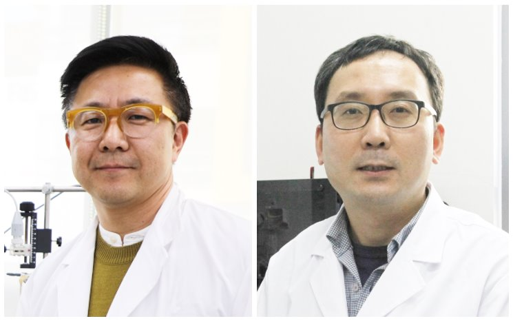Lee Yun-il, Head of the Well Aging Research Center (Left) and Professor Yea Kyung-moo of the Department of New Biology (Right)