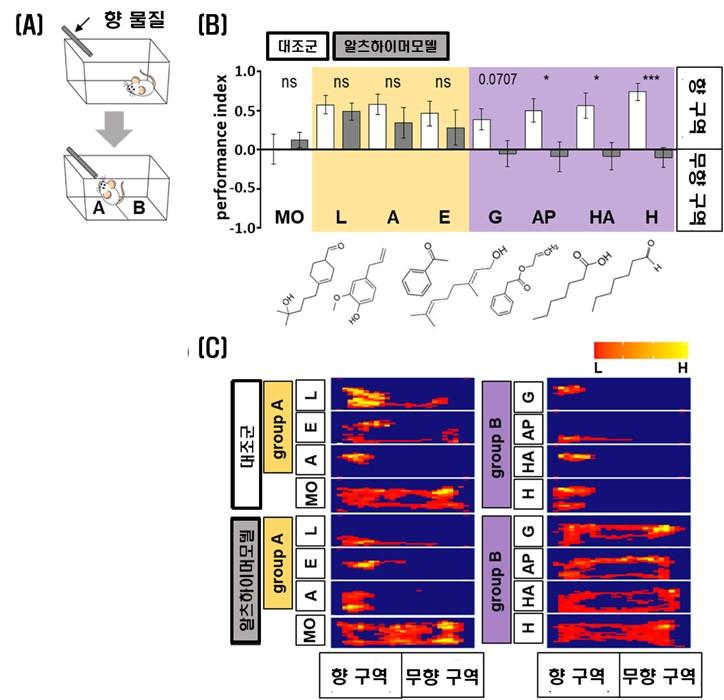 관련사진2.부분 후각 기능 저하를 보이는 알츠하이머 모델의 후각 능 실험 결과